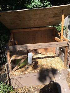 Small animal cage for sale Peterborough Peterborough Area image 7