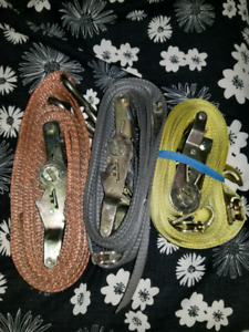 LOGISITIC CARGO RATCHET STRAP/2X20/PRICES VARY