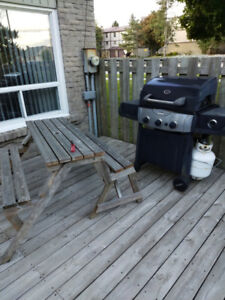 Moving sale BBQ Lamps Microwave and Paris art