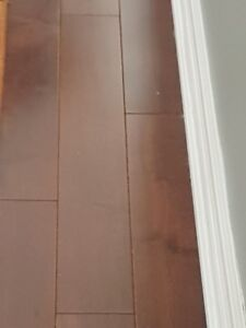 "Beautiful 4 1/4"" Maple Hardwood Floor - 85 sq. ft."