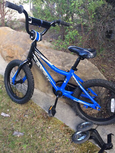 GIANT kid bike 16 inch for 4 to 7 years old
