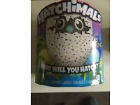 Hatchimials toy draggles green/blue sold out everywhere brand new sealed