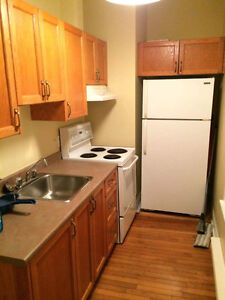 Beautiful Bachelor apartment in the south end!