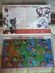 Home Grown Canadian Hockey Heroes 2003/2004 Pin Collection West Island Greater Montréal image 3