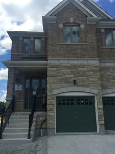 "End Unit Town Home  (""BRAND NEW"")  4 Bdrm in Bradford !!!"