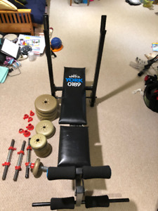 York Adjustable Weight Bench with Dumbell Weights