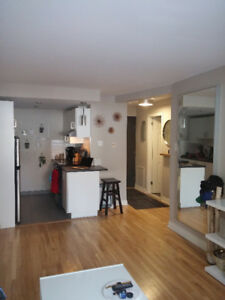 Sublease Apartment Januray 1st