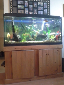 100 gallon tank and stand