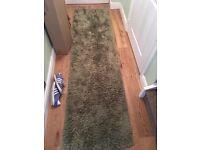 Green hall way rug