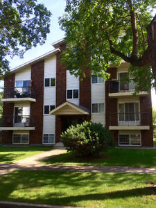 Newly Renovated Whyte Avenue/University District Apartment