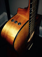 Taylor expression system acoustic/electric guitar