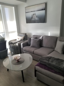 Light Grey Couch with Chaise Lounge