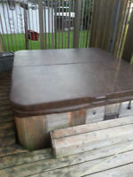 Hot Tub with cover - $850