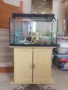 Fish tank and stand +  accessories