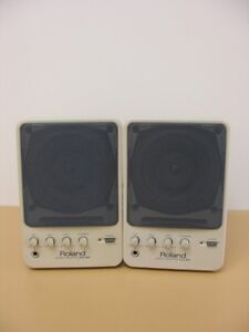 Two Roland MA20 powered monitor speakers