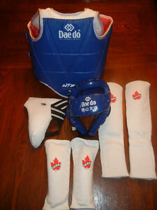 Youth TaeKwon Do Sparring Gear - Excellent Condition $80 Cambridge Kitchener Area image 1