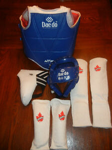 Youth TaeKwon Do Sparring Gear - Excellent Condition $80