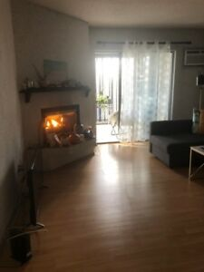 Renovated One Bedroom Condo for Rent in St. Vital