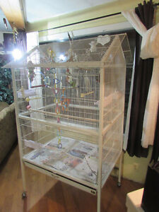 LARGE FLIGHT CAGE condo / or can be used as one cage