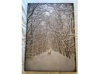 Gorgeous snowy woods canvas