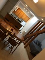 Beautiful downtown apartment, Utilities included