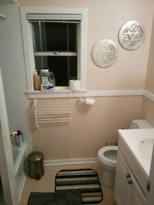 Furnished Room In Kits  $800 plus uitilities