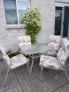 Lightly Used Outdoor Dining Set - Table & 4 Chairs