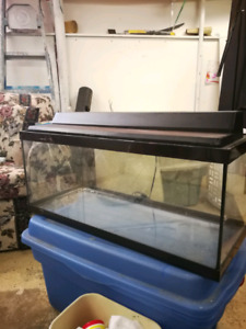 20 Gallon Freshwater Fishtank!
