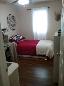 Available now one bedroom close to NBCC ,bus route in front