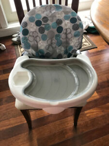 Reclinable Booster Seat