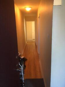 4 1/2 Appartement à Louer / 4 1/2 Apartment for Rent
