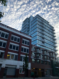 Beautiful 1 Bedroom Unfurnished Downtown Condo with parking
