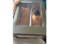 Brand new in box baby Timberlands