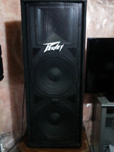 PA GEAR NEW PEAVEY 215 speakers and Amp and ART EQ and cables
