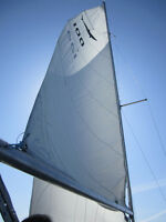 24' Shark Sailboat - GREAT DEAL!