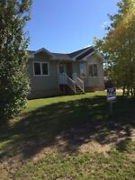 New house for sale in Snow Lake