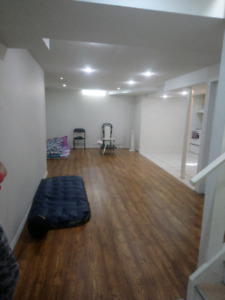 1 bedroom basement w kitchen and living room & separate entrance