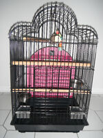 parrot cage BIG