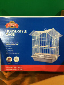 Sleek Green Cheeked Conure - comes with cage! Kitchener / Waterloo Kitchener Area image 10