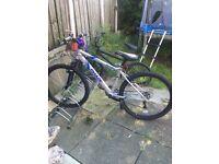 Apollo phaze bike