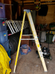 Fiberglass 6ft ladder.