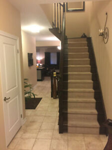 New Semi-Detached House for Rent in Stoney Creek Mountain