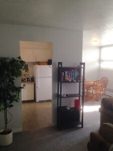 Beautiful 1 bedroom for a great price