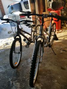 2 new/old bikes.