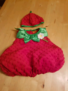 9 months strawberry costume