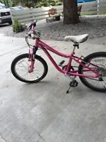 """Specialized Hotrock Bike 20"""" wheels"""
