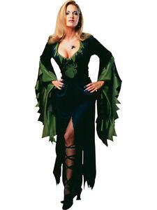 Adult Ladies Uk 10-14 Spider Enchantra Witch Halloween Fancy Dress Costume