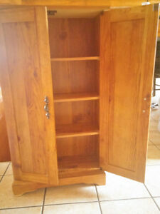 DVD shelving unit with doors