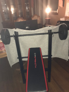 ONLY USED A FEW TIMES WEIGHTS & BENCH,  LIKE NEW !!!