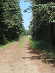 CATTLE/HORSE RANCH, STRATHCONA COUNTY